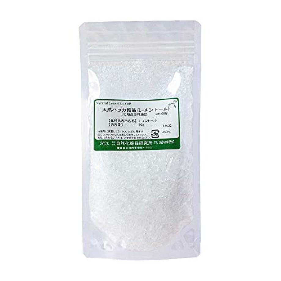 ペイントウィザード日焼け天然 ハッカ結晶 L-メントール 50g