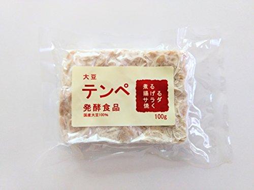 国産大豆テンペ100gx10個