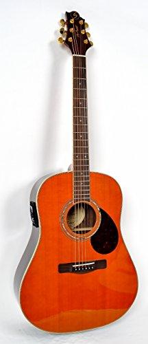 Greg Bennett グレッグベネット エレアコギター SJ-16E (AM)