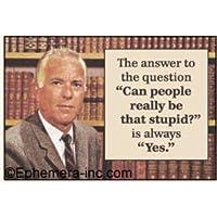 """問題の答えを""""、People本当にBe That Stupidか」は常に「はい。」–長方形マグネット"""