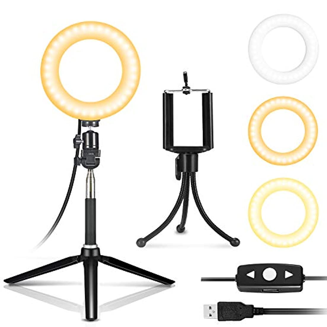 つぼみ望ましい電気IDESION 自撮り補助セルフィー LEDライト ミラー 女優ライト 6インチ円形 3色調節可能 リモコン付き ハリウッドライト USB給電 日本語説明書付き
