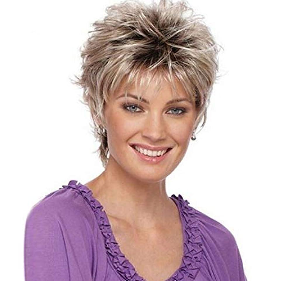 一般的にリーズクラッシュYOUQIU 女子ショートカーリー波状のかつらグレー人工毛フルウィッグのかつら (色 : グレー)