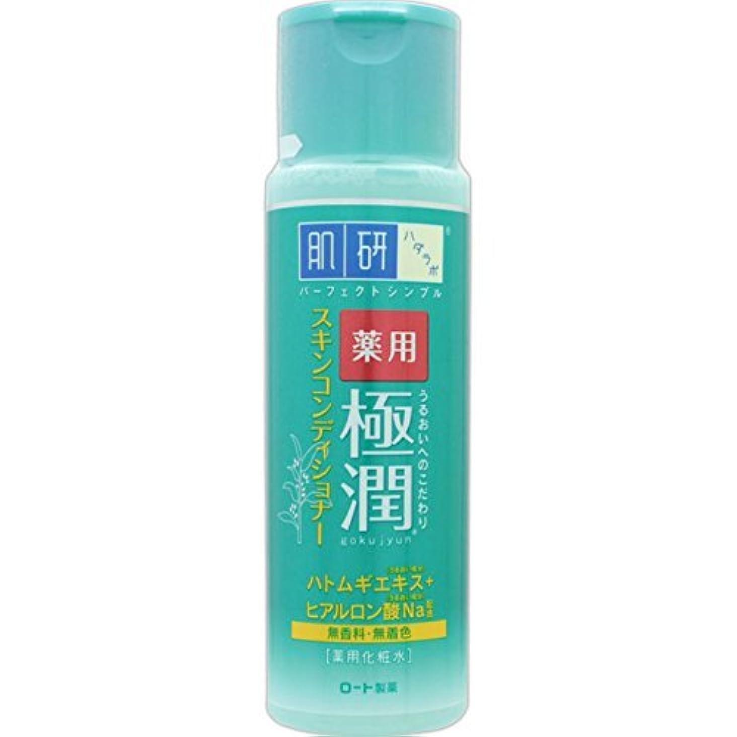 適用する傾く義務肌研 薬用 極潤 スキンコンディショナー 170mL (医薬部外品)
