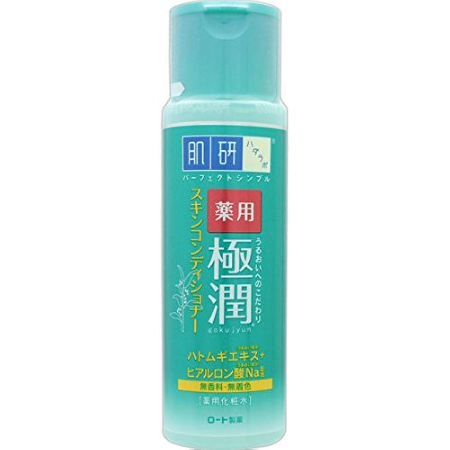 不格好幻滅加入肌研 薬用 極潤 スキンコンディショナー 170mL (医薬部外品)