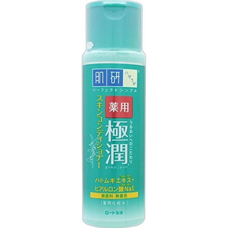 蒸気人形徐々に肌研 薬用 極潤 スキンコンディショナー 170mL (医薬部外品)
