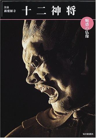 魅惑の仏像 十二神将―奈良・新薬師寺 (めだかの本)の詳細を見る