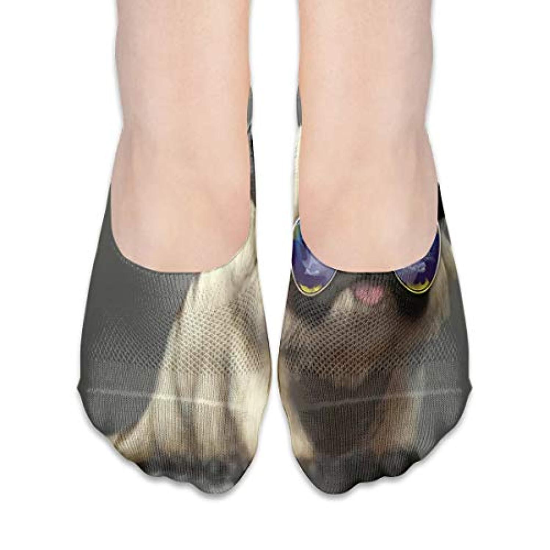 脊椎ラッチ冷えるサングラスローカットコットンボート隠し目に見えない靴下と女性のパグ犬