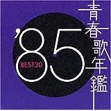 青春歌年鑑 1985