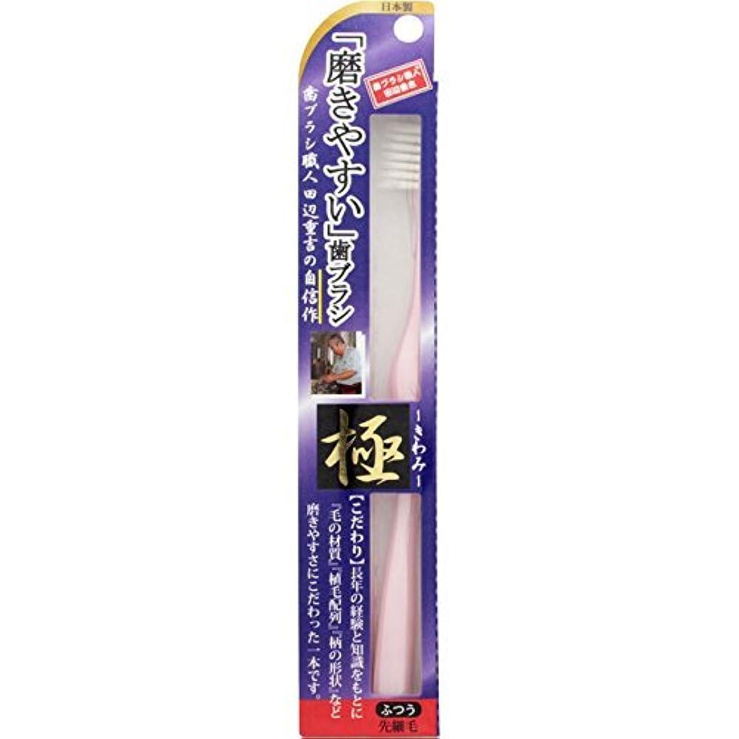 ドキュメンタリー工業化する悪性腫瘍【まとめ買い】磨きやすい歯ブラシ 極 LT22 ×3個