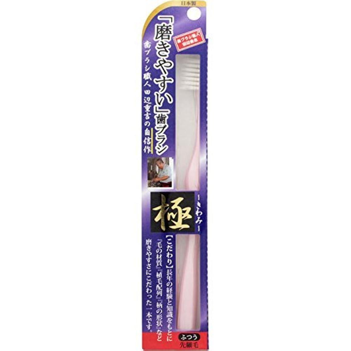 オレンジサラミ絶望【まとめ買い】磨きやすい歯ブラシ 極 LT-22 ×10個