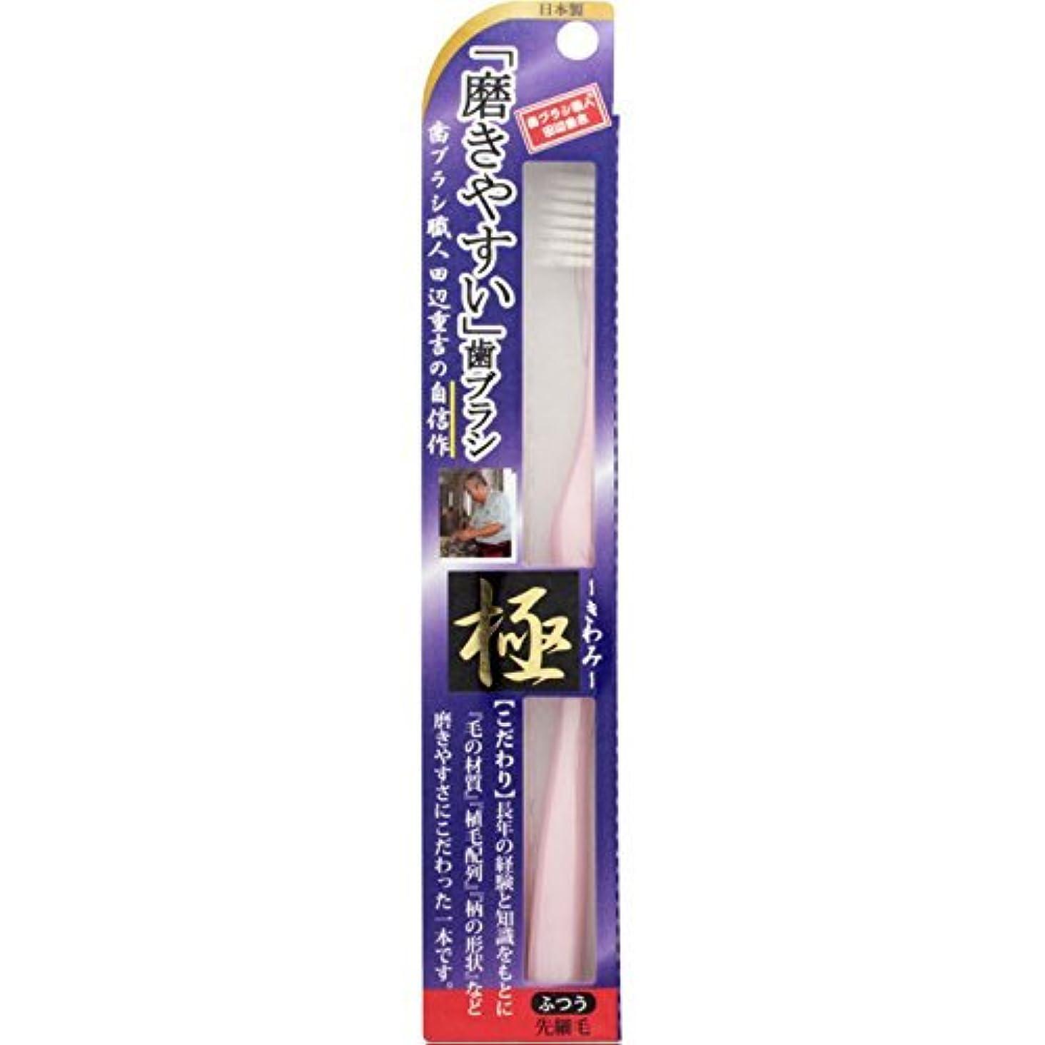 ヒューマニスティック乱暴な刺激する【まとめ買い】磨きやすい歯ブラシ 極 LT-22 ×24個