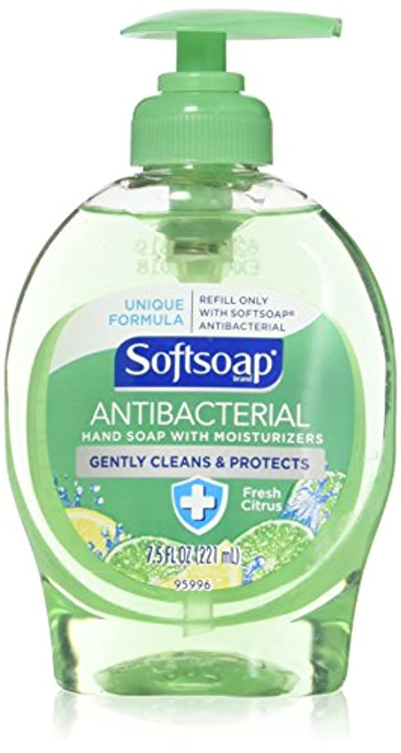 に同意する距離境界Softsoap Antibacterial Hand Soap with Moisturizers Fresh Citrus by Softsoap