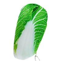 Weanty 筆箱 おしゃれ 創意野菜デザイン かわいいやわらかペンケース ふでばこ 小物入り 質感いい 化粧品袋、筆箱、学生用ステーショナリー size 24.5x12CM (白菜)