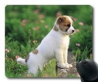 ゲームマウスパッド、アラスカMalamute犬の犬の恋人、正確な縫い合わせ、耐久性のあるマウスパッド