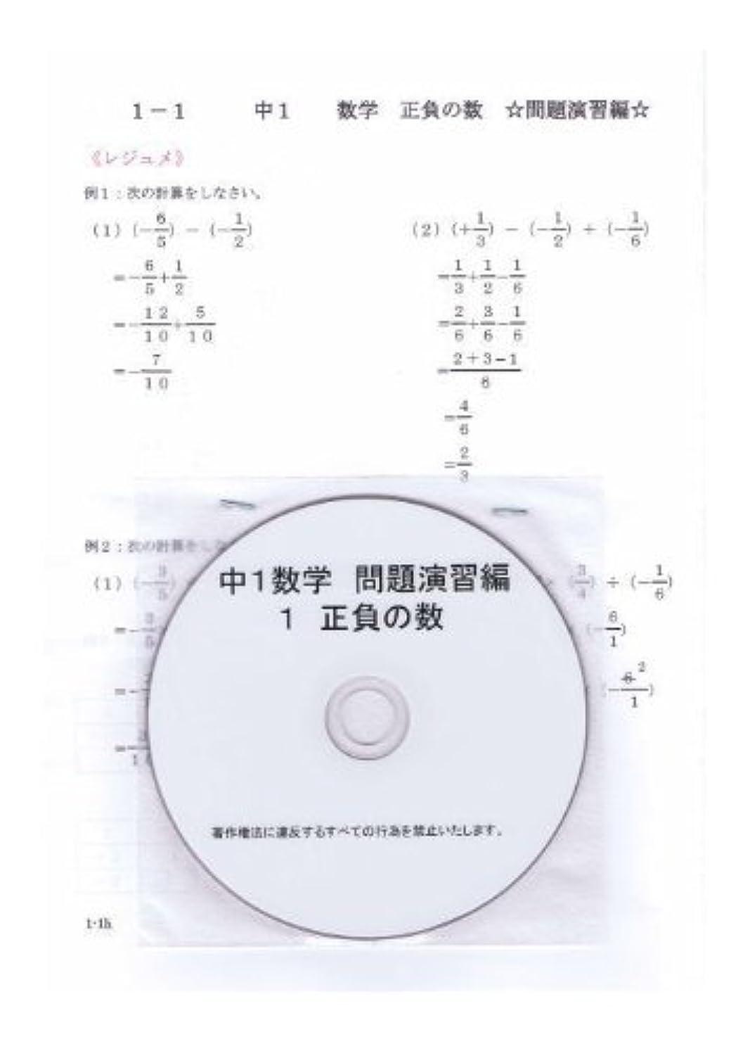 継承茎無駄だ中学 数学 1年【応用】問題集 2 文字の式 DVD (授業+テキスト+問題集)