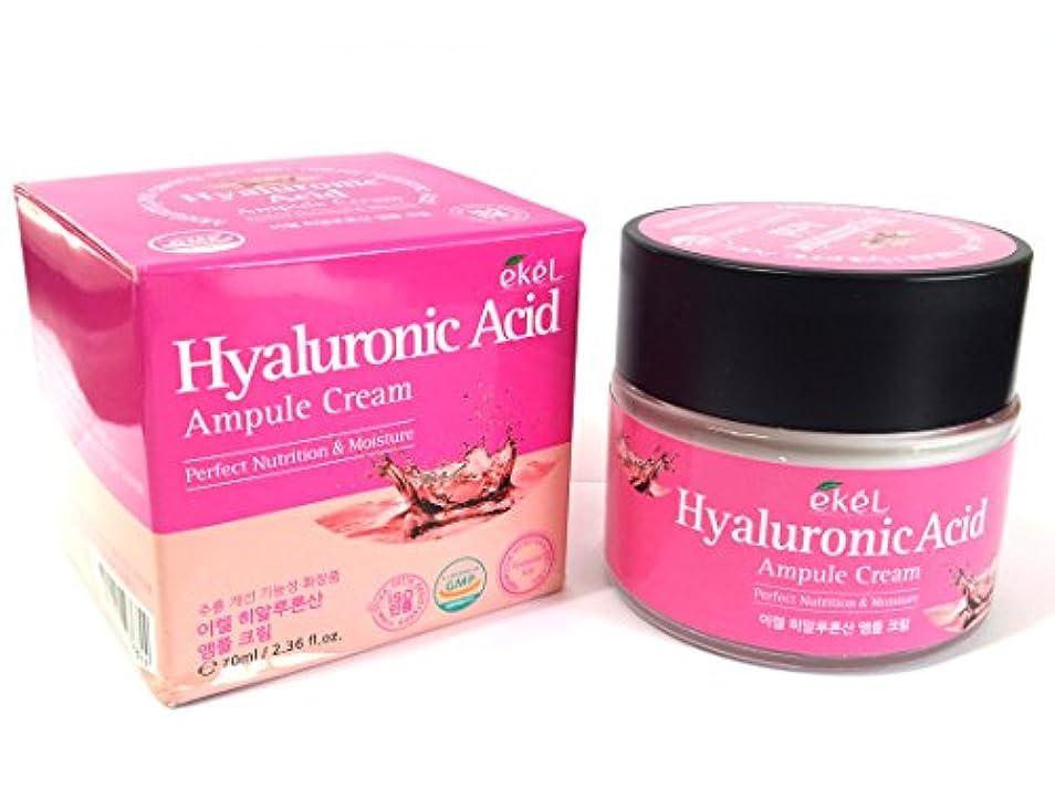 空洞開業医受け入れ[EKEL] ヒアルロン酸アンプルクリーム70ml / 完璧な栄養と水分 / 韓国化粧品/ Hyaluronic Acid Ampule Cream 70ml / Perfect Nutrition & Moisture / Korean Cosmetics [並行輸入品]