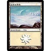 MTG 冠雪の平地  コモン CSP 151/155 土地