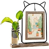 vxiss 額縁 フォトフレーム ナチュラル 木製 プレゼント ブラウン はがき 植物栽培可 写真立て 置き 猫 かわい…