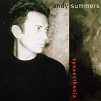 Synaesthesia by ANDY SUMMERS (2014-02-04)