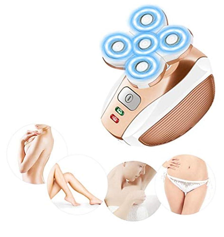 不健全ぐるぐる備品ヘアリムーバー女性、ピーチファズ/フェイシャルヘア/リップ/チン用ポータブル電気かみそり、防水USB充電式レディーシェーバー