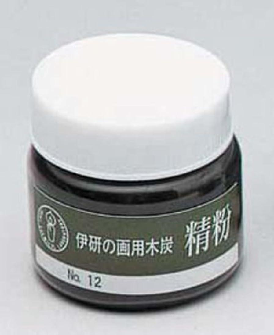 たるみコスチュームアマチュア伊研 木炭精粉 №12瓶入 30ML