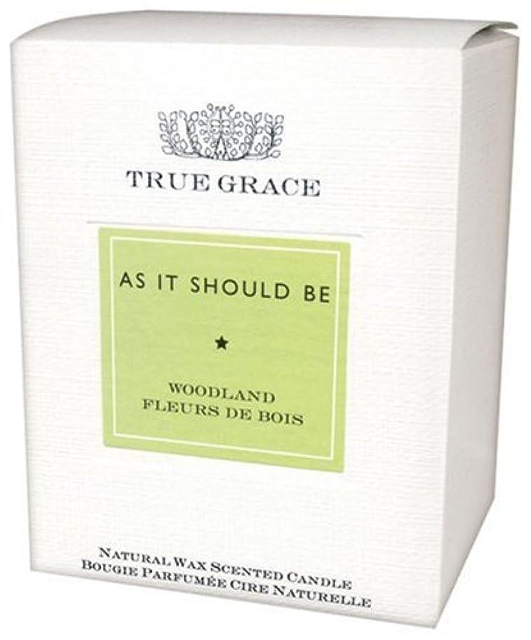対宝憲法トゥルーグレース クラシックシリーズ フレグランスキャンドル ウッドランド 180g