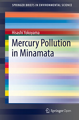 Mercury Pollution in Minamata (SpringerBriefs in Environmental Science)