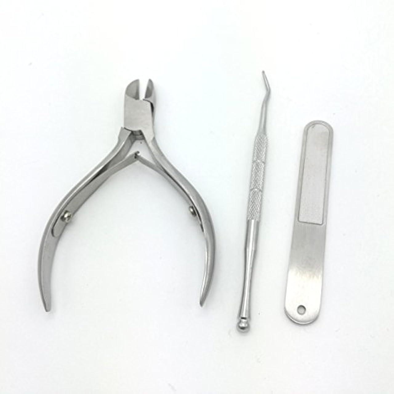 溶かす単に確かな爪切り 改良版ニッパー爪切り ステンレス製 ニッパー式爪切り ネイルニッパー 爪やすり、ゾンデ付き お年寄りプレゼント 贈答ケース付属