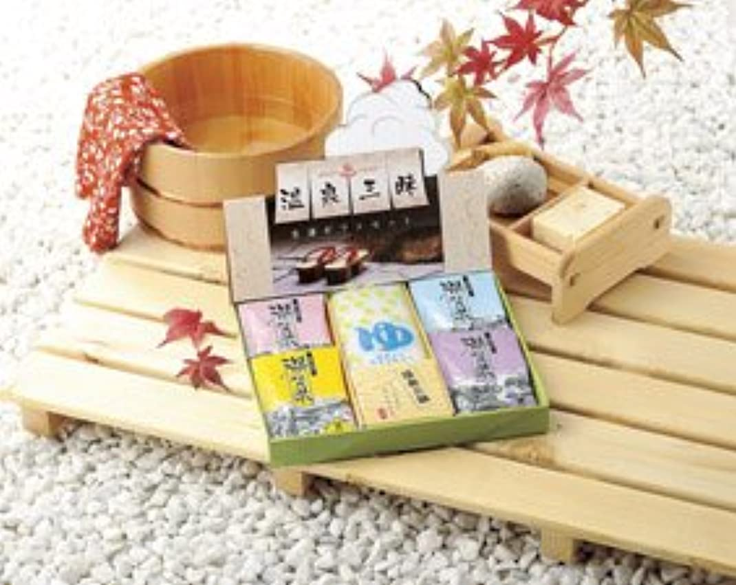 代数的折る驚くべき温泉三昧 名湯ギフトセット 1ケース60個入り(1個単価¥415)