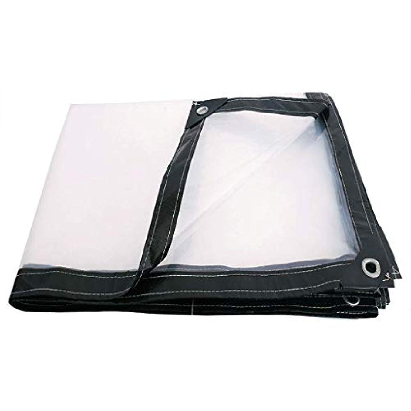 戦略急流適切な透明な防水シート防雨布防雨布布厚いプラスチック布レインバイザーレイン布レイン布レインターポリン (Color : Clear, Size : 3x3m)