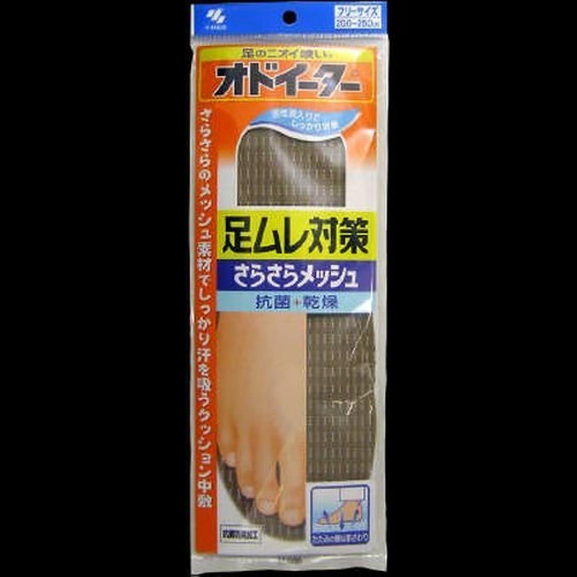 ペインティング掃く特異なオドイータ足ムレ対策さらさら ×2セット