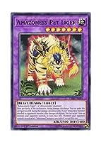 遊戯王 英語版 CIBR-EN094 Amazoness Pet Liger アマゾネスペット虎獅子 (ノーマル) 1st Edition