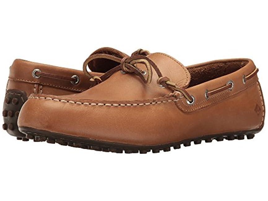 ダルセット湿度環境保護主義者[SPERRY TOPSIDER(スペリートップサイダー)] メンズローファー?スリッポン?靴 Hamilton II 1-Eye