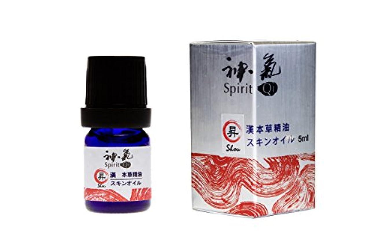 スラッシュ反響する折り目神気症状別シリーズ 昇(Shou) (5ml)