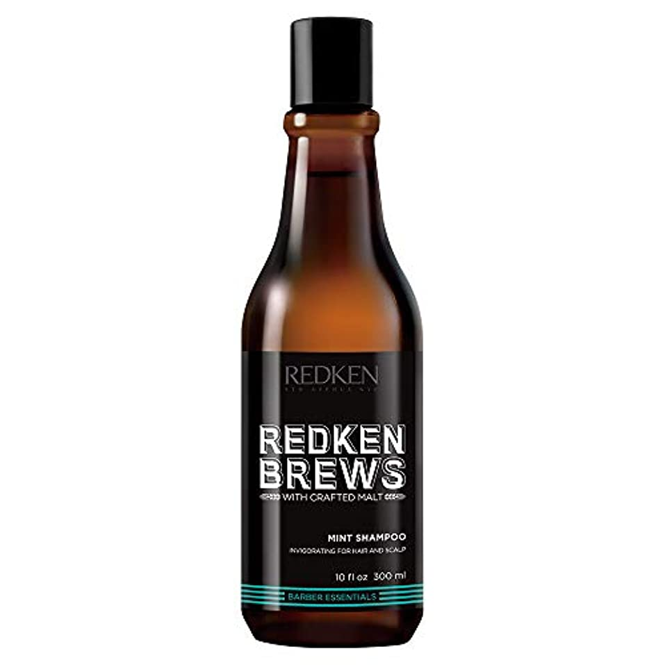 以降慣習歴史家(10.1 Fluid Ounce) - Redken Brews Mint Shampoo, 300ml