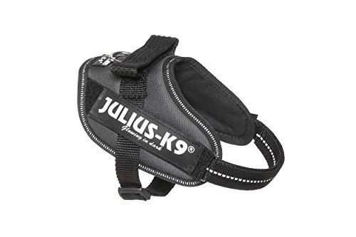 Julius‐K9(ユリウスケーナイン)『パワーハーネス』