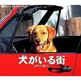 犬がいる街 世界の国から