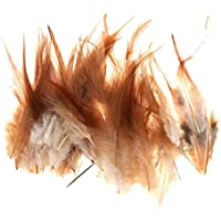 約50個の装飾10-15 CmのDIYジュエリー/工芸品/髪のアクセサリーのための鶏の羽を染める約50個