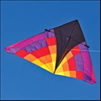 Into The Wind 9-ft. Levitation Ember Single Line Delta Kite by Into The Wind [並行輸入品]