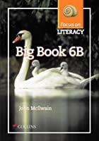 Focus on Literacy: Big Book 6B