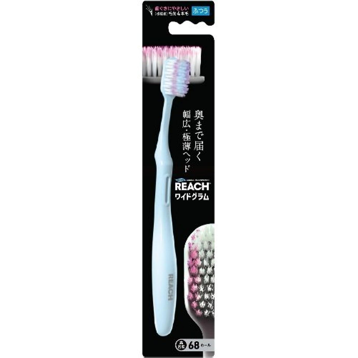 知る基本的な注入銀座ステファニー化粧品 リーチ 歯ブラシ ウルトラワイドグラム ふつう 1本入 4560279550966