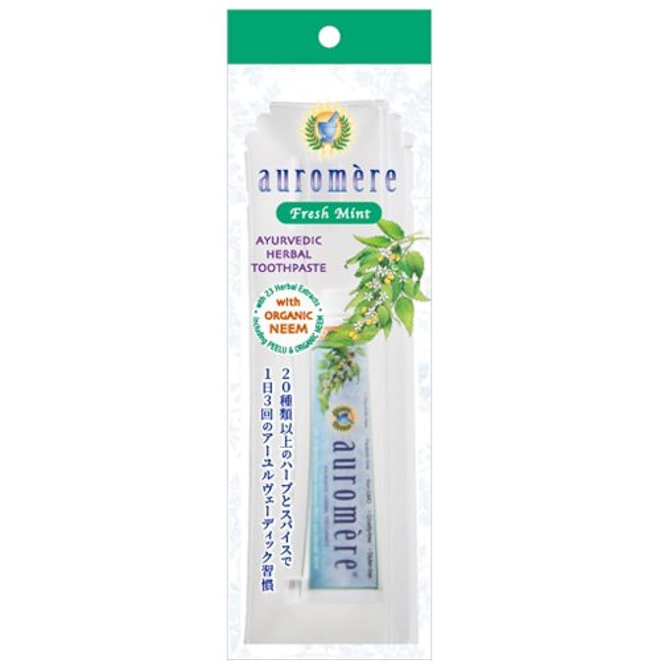 悔い改め開始ご注意オーロメア 歯磨き粉 フレッシュミント トラベルセット (30g)