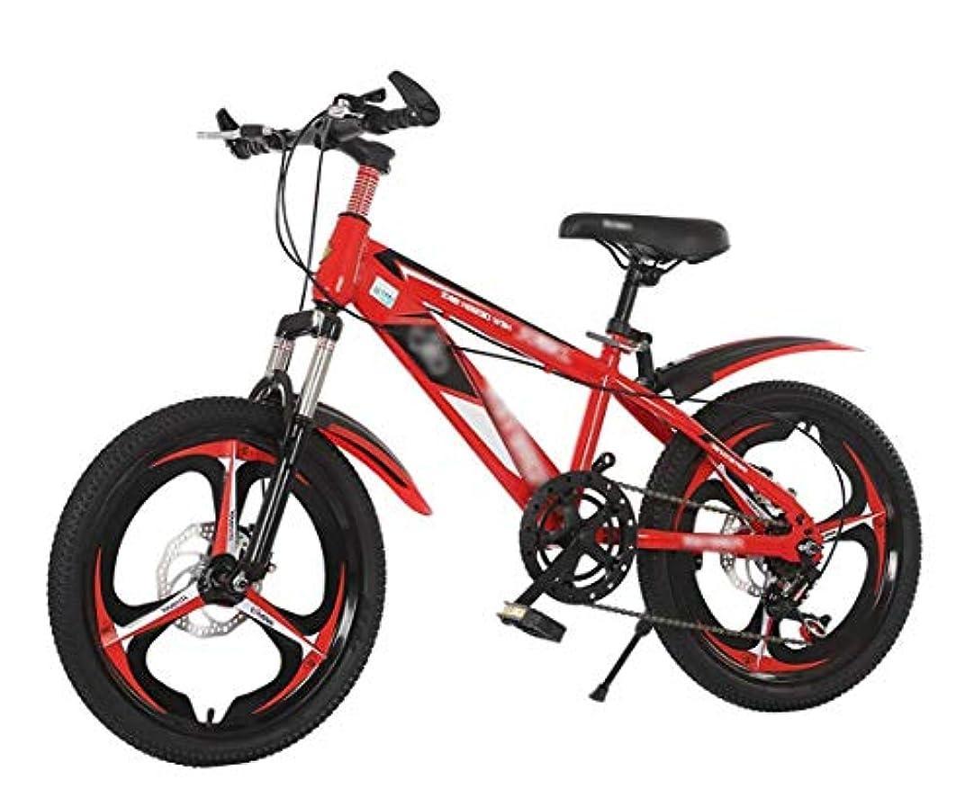 歴史風景特権的キッズバイク、マウンテンバイク。 6-9 歳のための 20 インチの自転車 フロントサスペンション ディスクブレーキ付き幼児子供自転車