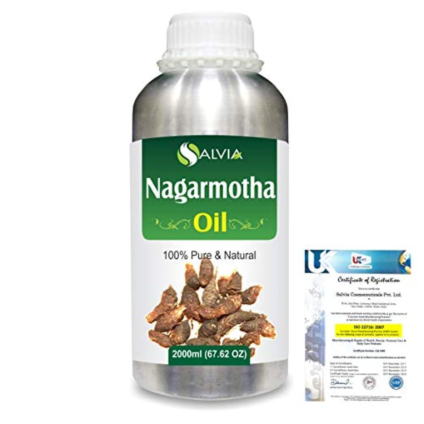 差別的空虚重要なNagarmotha (Cyprus scariosus) 100% Natural Pure Essential Oil 2000ml/67 fl.oz.