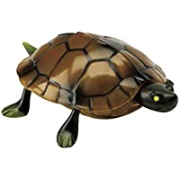 The Paragon Remote Control Turtle - RC Animal Toy for Kids and Adults 【You&Me】 [並行輸入品]
