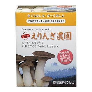 エリンギ栽培キット 【もりのえりんぎ農園】