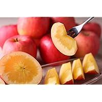 蜜入り りんご こうとく 2.5k(8~9玉)生産直販