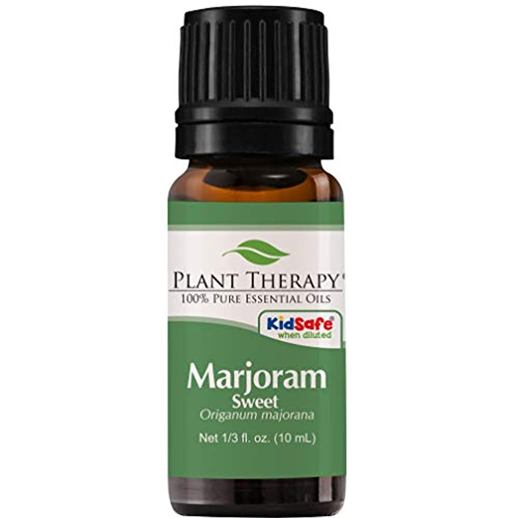 落ち込んでいる芸術ゴルフPlant Therapy Undiluted Therapeutic Grade Essential Oil, Sweet Marjoram by Plant Therapy