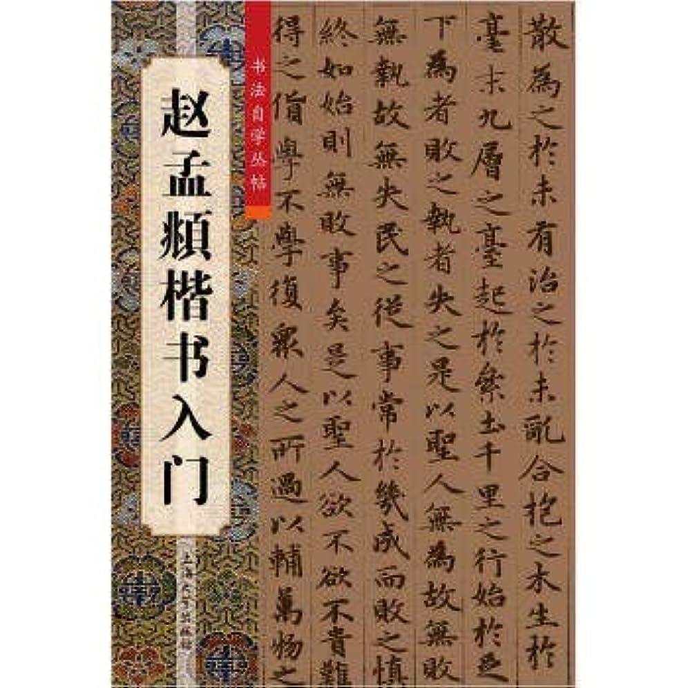 寄り添う解放する物理的に趙孟頫楷書入門