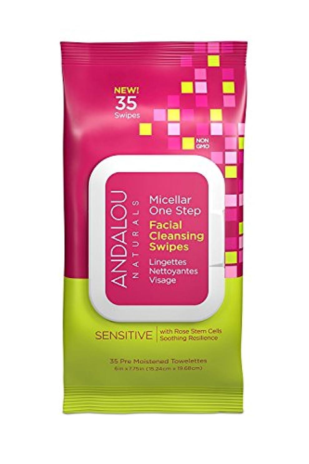 ヨーロッパとティームふくろうオーガニック ボタニカル クレンジングシート 洗顔シート ナチュラル フルーツ幹細胞 「 Sミセラスワイプ 35枚入り 」 ANDALOU naturals アンダルー ナチュラルズ
